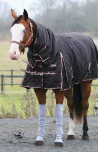 Håll dig själv och hästarna varma under stormen